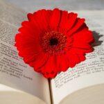 【都立進学重点校受験】哲学・思想系課題文に慣れるための推薦図書ランキング!